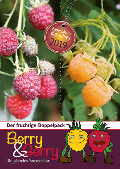 Berry Gerry Auswahl